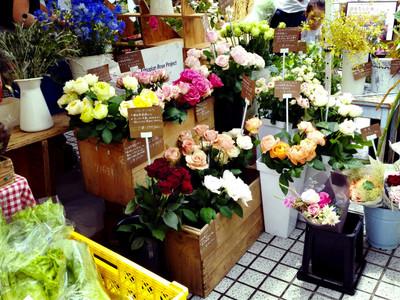 Linecamera_share_20150615113740